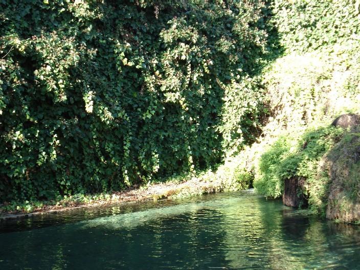 La Canal Alconera