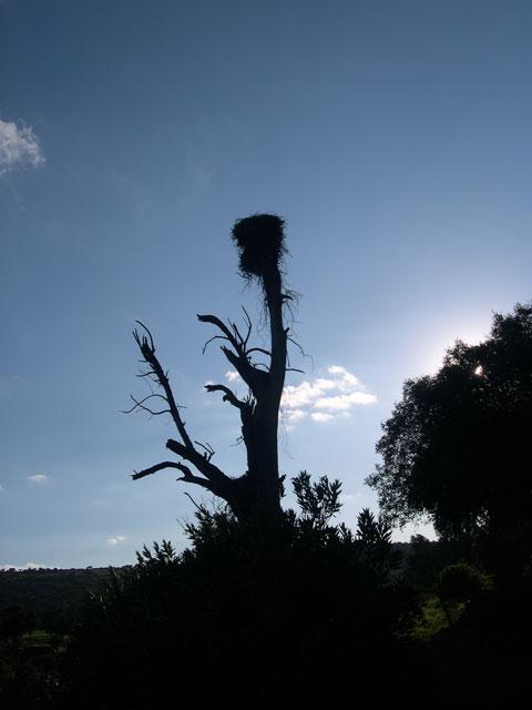 Naturaleza Atalaya